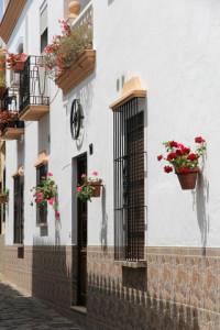 Moving to Estepona Spain